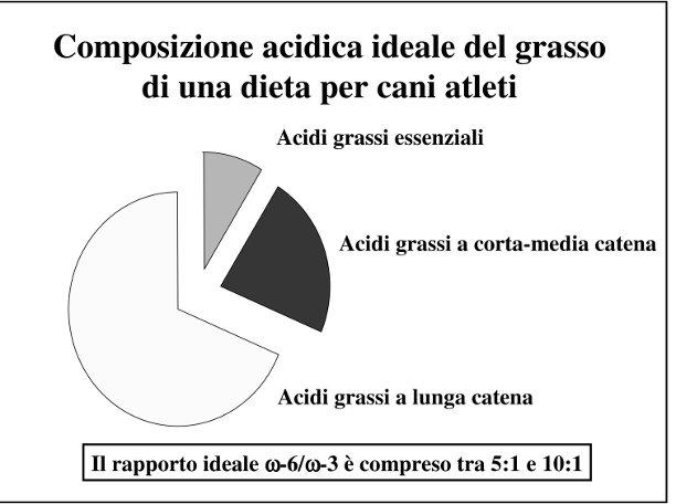 Composizione degli acidi grassi nella dieta del cane