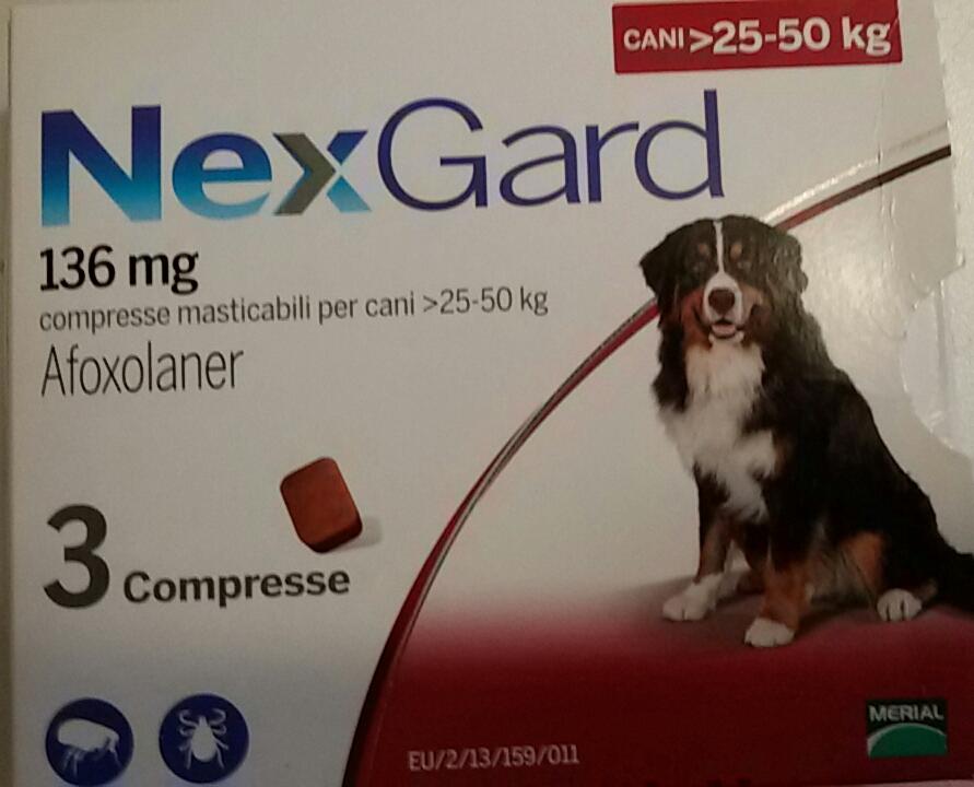cardotek  Filariosi cardiopolmonare del cane - profilassi o cura - Cane di ...